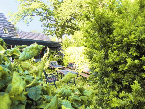 """Blick in den Garten der Pension und Ferienwohnungen """"De Strandloeper"""" in Prerow"""